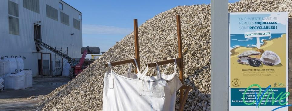 Collecte des déchets coquillers