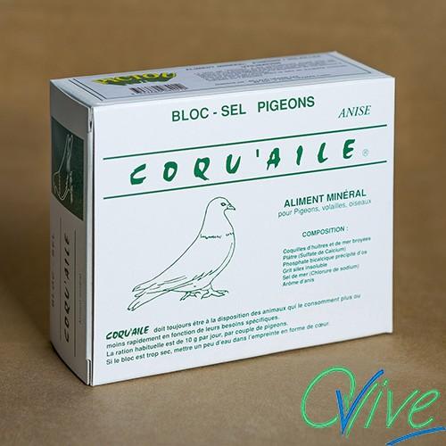 Bloc pigeons Coqu'aile
