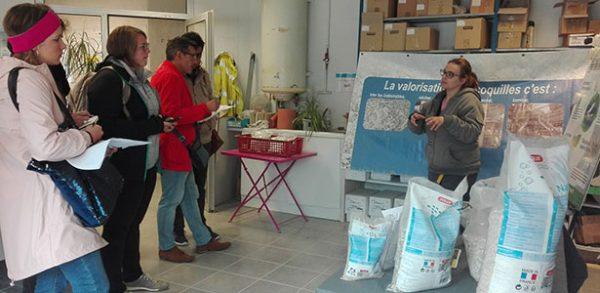L'école de Commerce Excelia Group La Rochelle en visite chez Ovive