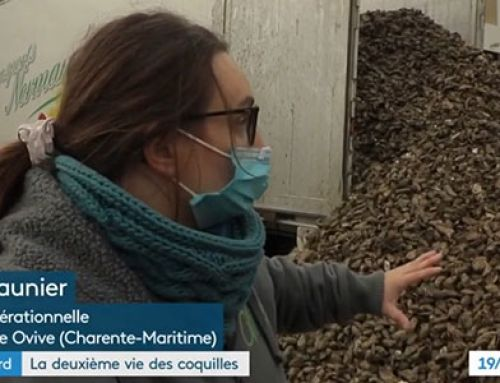 [France 3] 19/20 : Journal national – Rien ne se perd, tout se transforme