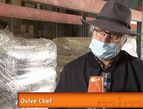 [ZDF] Recyclage des huîtres en France
